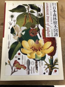 日本森林樹木図譜
